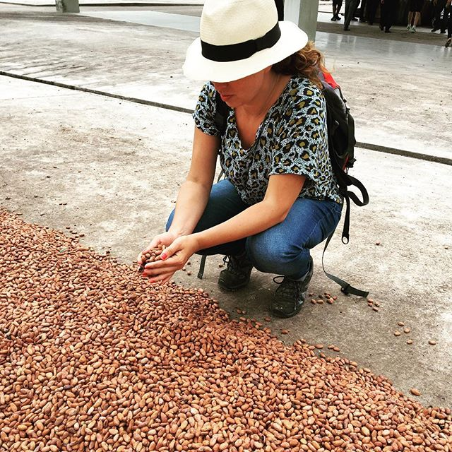 Time to get out the Panama 👩🏻🌾! I'm going to Ecuador soon. (And yes.. the Panama hat actually comes from Ecuador, not Panama) 🇪🇨 #ecuador #proecuador #cacao #cocoa #chocolate #cacaojuicemovement #panamahat