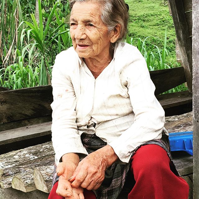 This is Jeanne. Hard to say what her age is (but working on the farm adds a few years). She was waiting for her cacao beans to dry next to the road when me and Steve walked by. Like most other farmers she is not connected to any cooperative, so she sells to middlemen for lower prices. I'm shocked that in a cacao-country like Ecuador only about 8% of the farmers sell cocoa beans to a cooperative! There can be several reasons for that, eg. the cooperative is weak, bad management or people don't have confidence in it. Or, like in the case of Jeanne, it's just too far out. #cocoa #chocolade #cacao #farmer #ecuador #cocoalife
