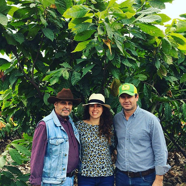 *news* Hacienda Victoria in Ecuador is a known name in the cacao sector. One that stands for integrity & quality, seriously next level farming. More than 500 hectares of land with 85 varieties of Arriba Nacional... by far the prettiest big farm I (and probably you too) have ever seen.  Proud that Moving Cocoa is now working as La Victoria's logistic partner. Together with @maridelarosa02 we put hands together with the Victoria team to bring this beautiful cacao to the European market. Know more? Send me a message! Oh and don't forget to check out the video below - it's pretty awesome! 🍫#cacao #cacaojuice #ecuador #haciendavictoria #chocolate #fineflavour #sustainability #agriculture #guayas #teamworkmakesthedreamwork  https://www.youtube.com/watch?v=EapFzBuSO9g
