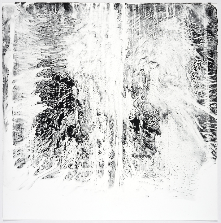 120111 Monotype 16x16in