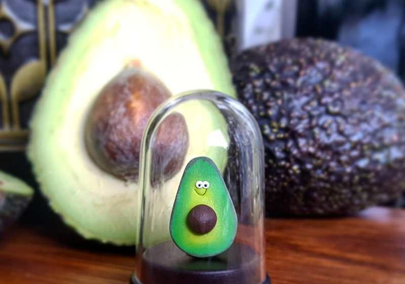 Pet avocado.png