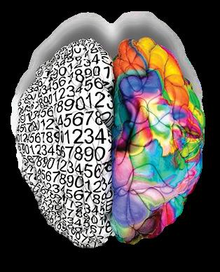 C3+Brain+Transparent+Background.png