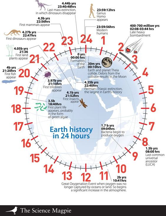 If geologic time were equated to the 24-hour clock, then modern humans have arrived just milliseconds before midnight.
