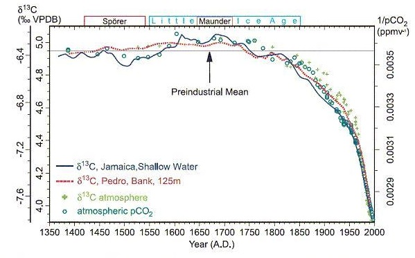 The proportion of the isotope, carbon-13 over time showing a dramatic decrease in recent decades.