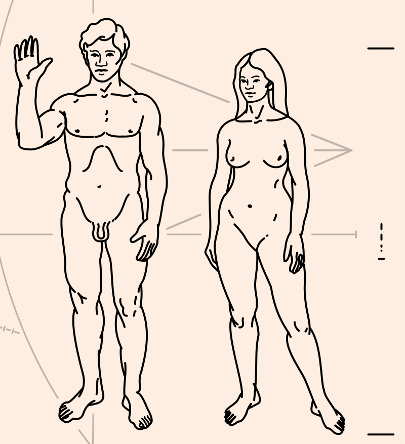 Some folks at NASA believed a vagina might make aliens blush, so they thought it prudent not to depict one on the Pioneer plague, er, plaque. Cock n' balls are ok though. How very grown up of them.