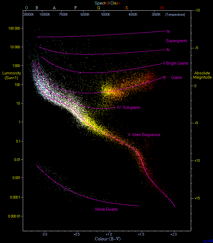 White Dwarfs, Main Sequence, Subgiants... are all branches on the    Hertzsprung-Russell diagram   .    Image Source: Wikipedia