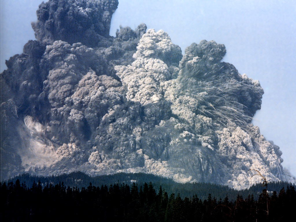 Actual photo of the 1981 eruption of Mt. St. Helens; a relatively docile eruption compared to an ultra-Plinian eruption.    Photo Credit: National Geographic
