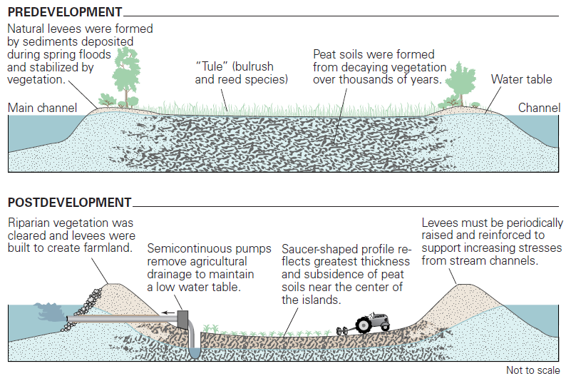 how the levees were made.png