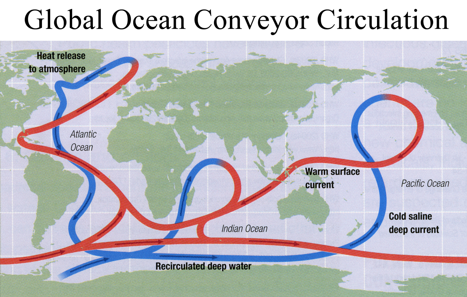 Fig. 2  This is a very generalized picture of global ocean circulation; known among academics as Thermohaline Circulation. Thermo (temperature), haline (salinity). Temperature and salinity are two characteristics of ocean water that most affect the density of water.