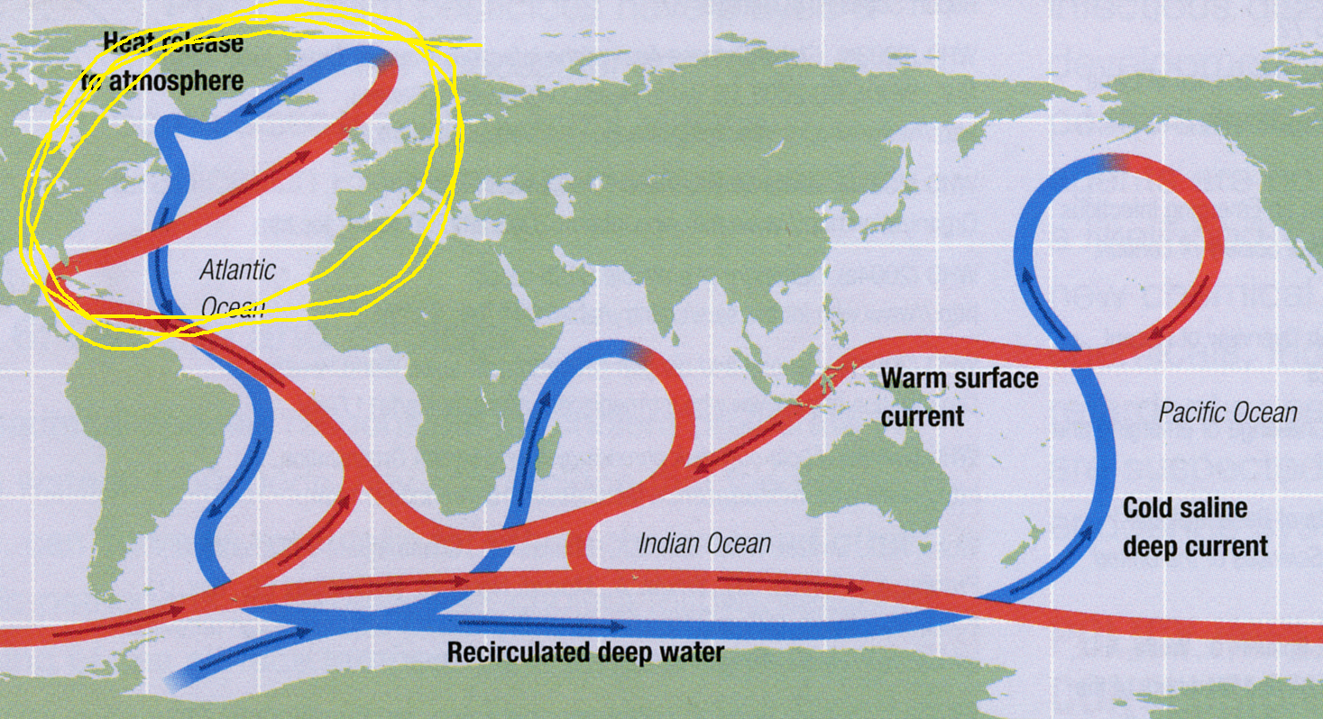 Fig. 3  A general picture of the Atlantic Meridional Overturning Circulation (AMOC) circled in yellow.