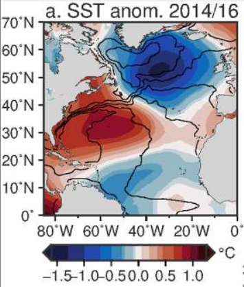 Fig. 1  Sea surface temperature anomalies from the ERSST dataset for the period July 2014–June 2016 (Frajka-Williams et al., 2017).