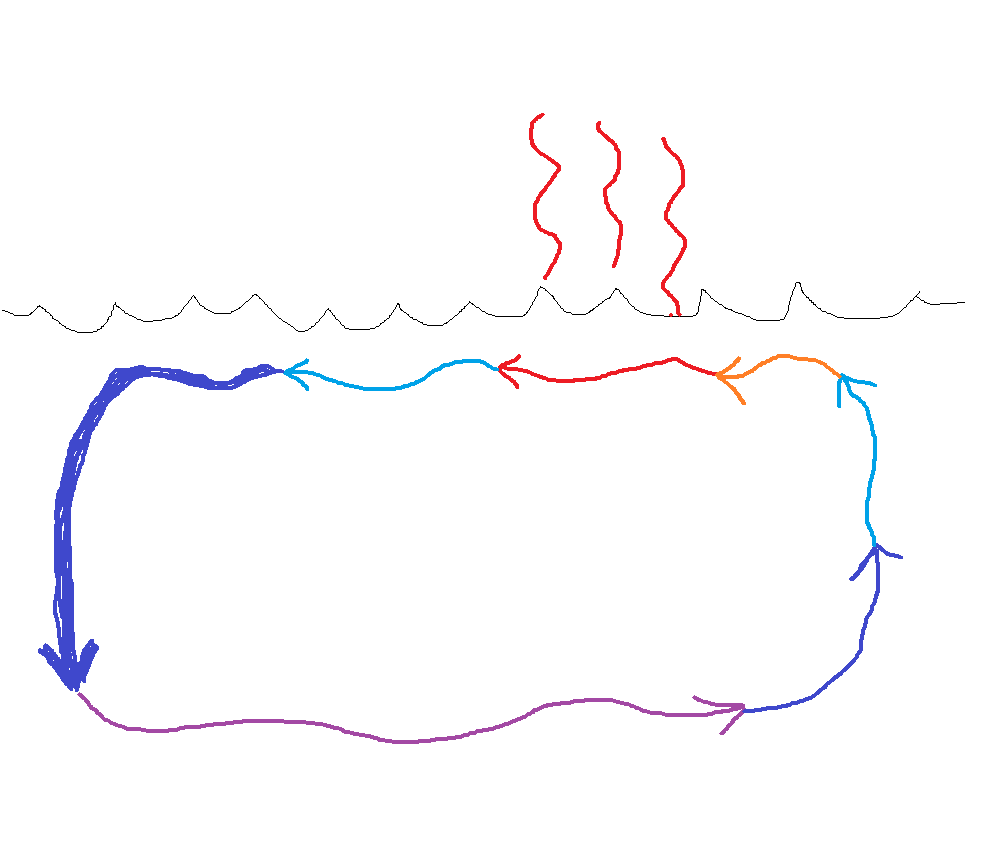 This sorry-looking diagram I drew this evening, illustrates the strong downward motion of sinking cold water at higher latitudes, pushing bottom water southward, where it eventually meets an obstruction such as a continent, then is pushed upwards to the surface where it is heated by the Sun, continuously pushed northward, releasing its heat to the atmosphere, then cooling to the point it becomes dense enough to sink again. If we look at the entire conveyor, rather than just the Gulf Stream (as is often taught), it becomes clear the water is pushed, not pulled (the latter being a physical impossibility).