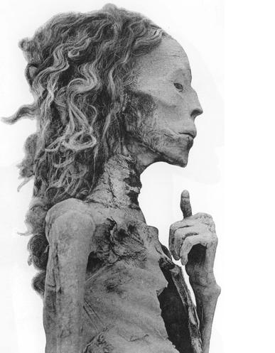 The mummy of the Great Wife, Tiye