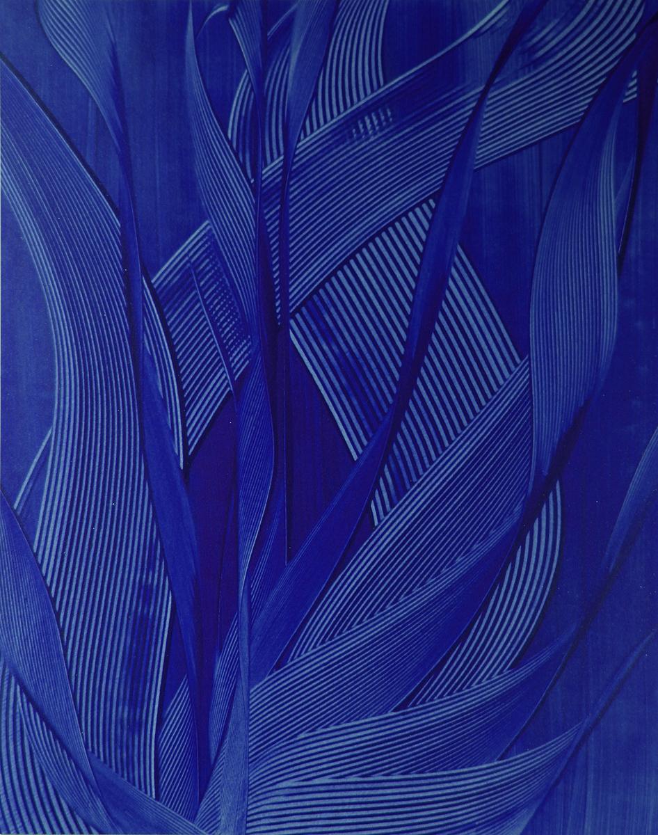 GRATITUDE BLUE -