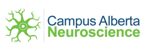 """Campus Alberta Neuroscience, launched in 2009, is a catalyst and connector, a way to bring basic researchers, applied scientists and clinicians together. It is a single community, a neuroscience """"superhighway"""" between the Universities of Lethbridge, Calgary, Alberta."""