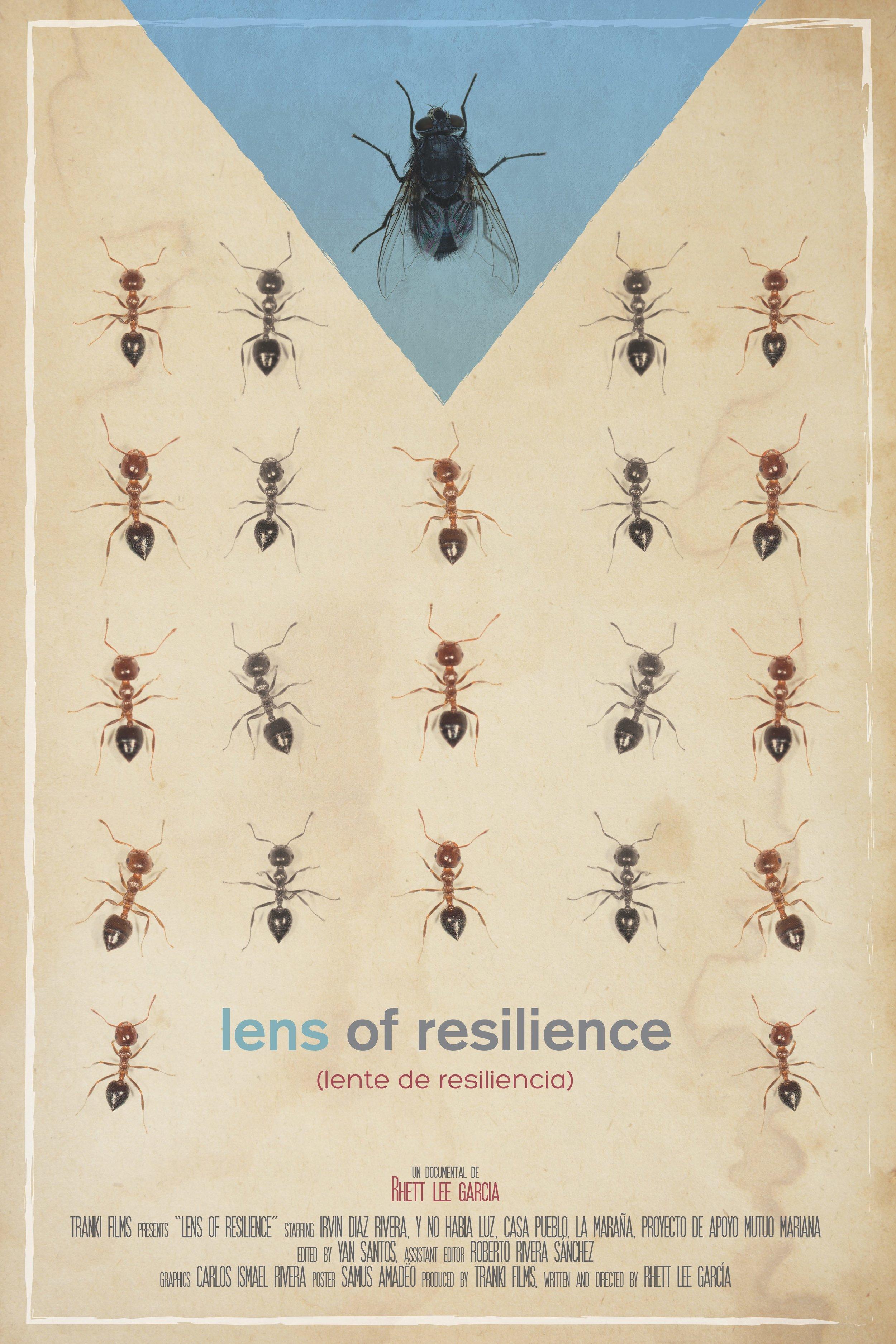 Poster Lente de resiliencia web.jpg