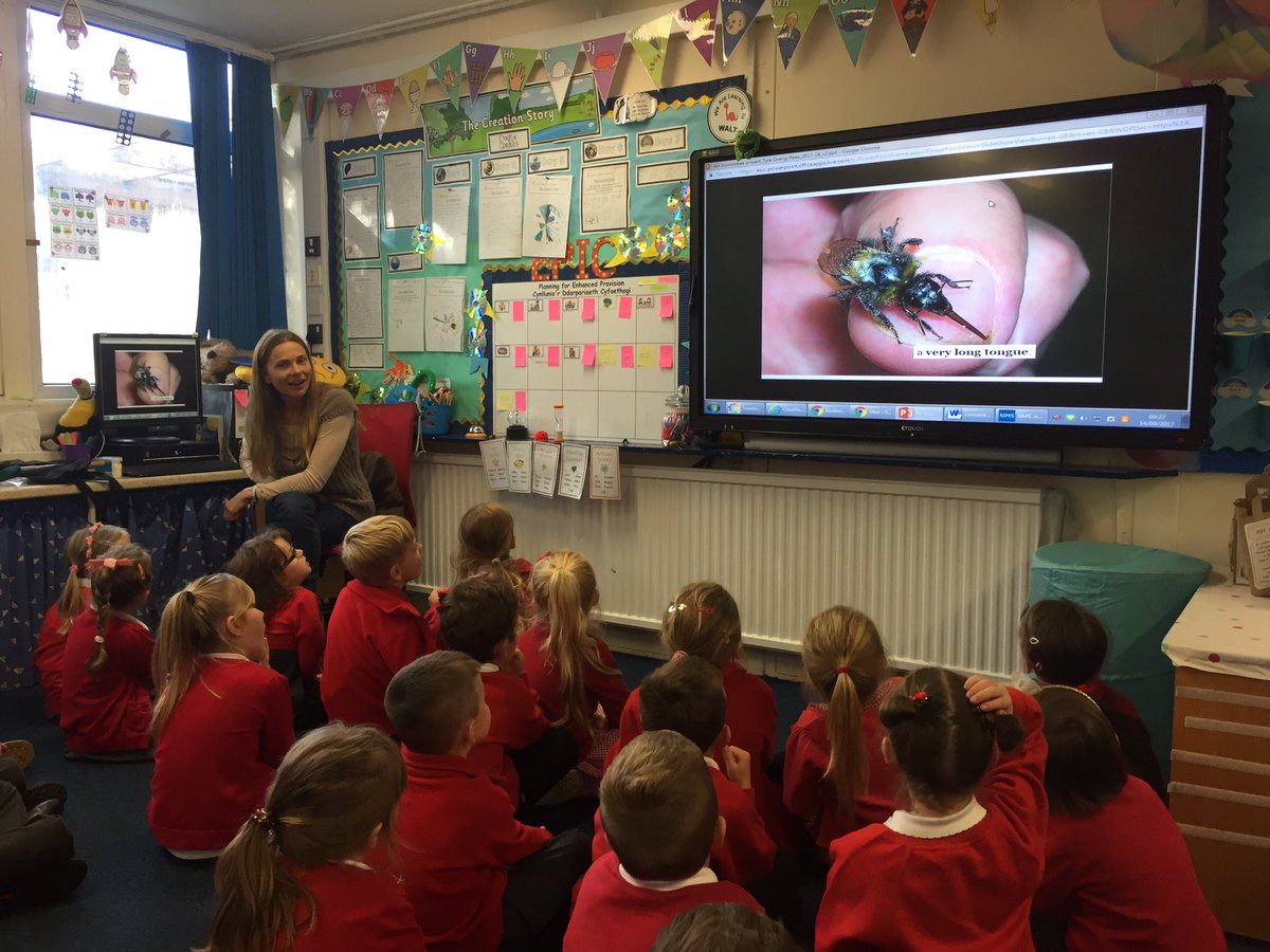 The Class were very interesting learning about bumblebees