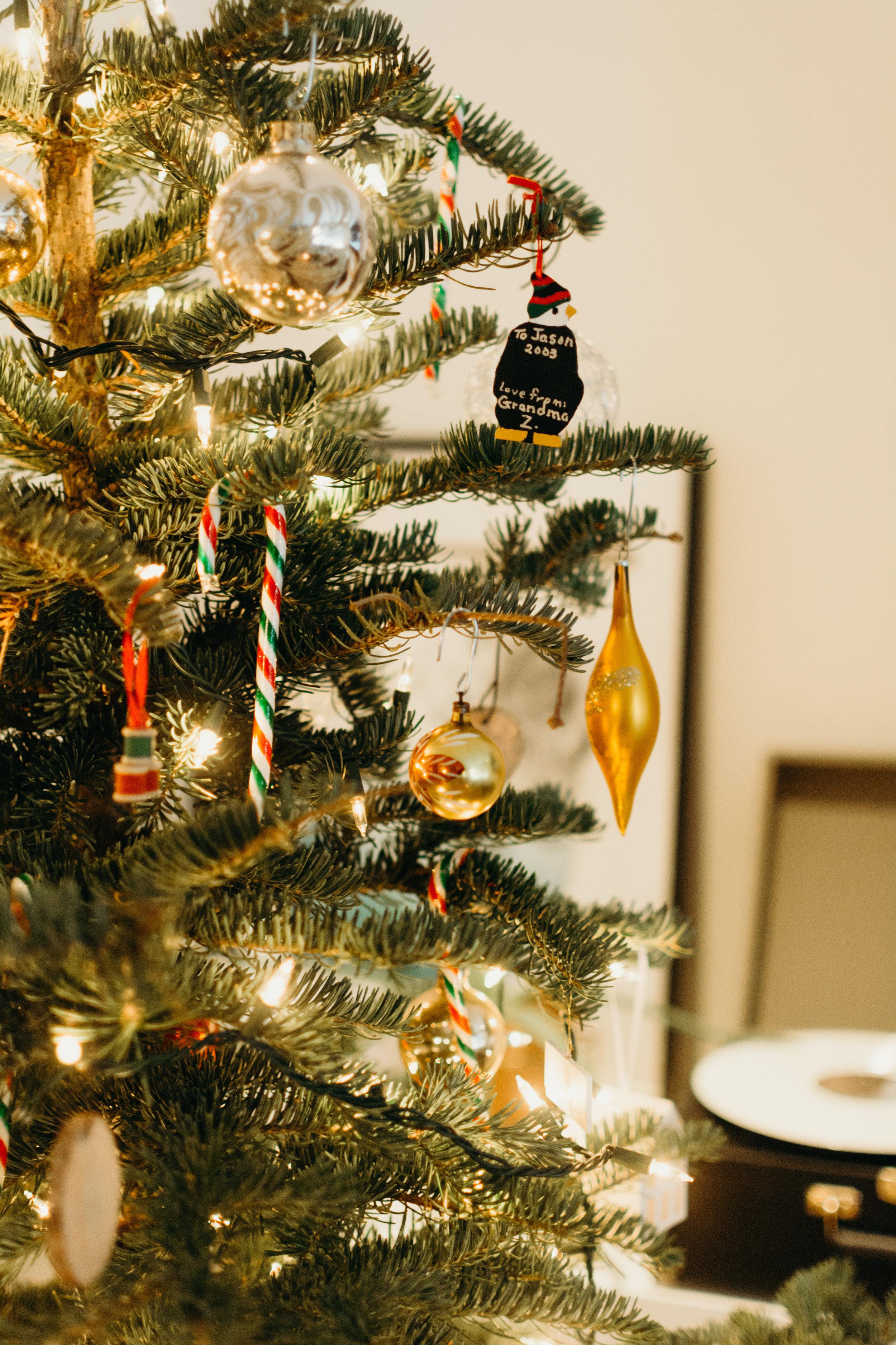 Sustainable Christmas - Madison Jamie Photograhpy - @madisonjoue-1731.jpg