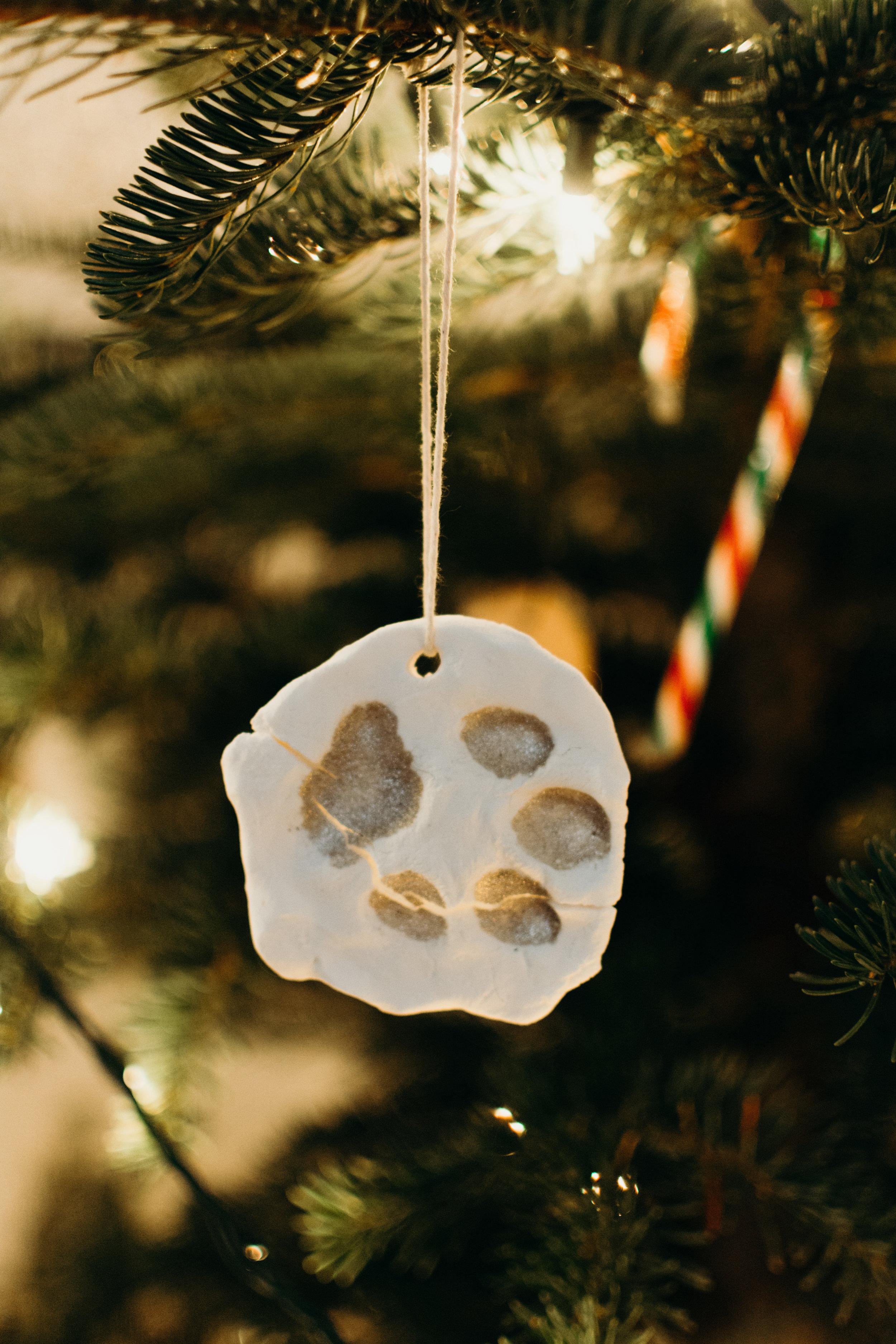 Sustainable Christmas - Madison Jamie Photograhpy - @madisonjoue-1764.jpg