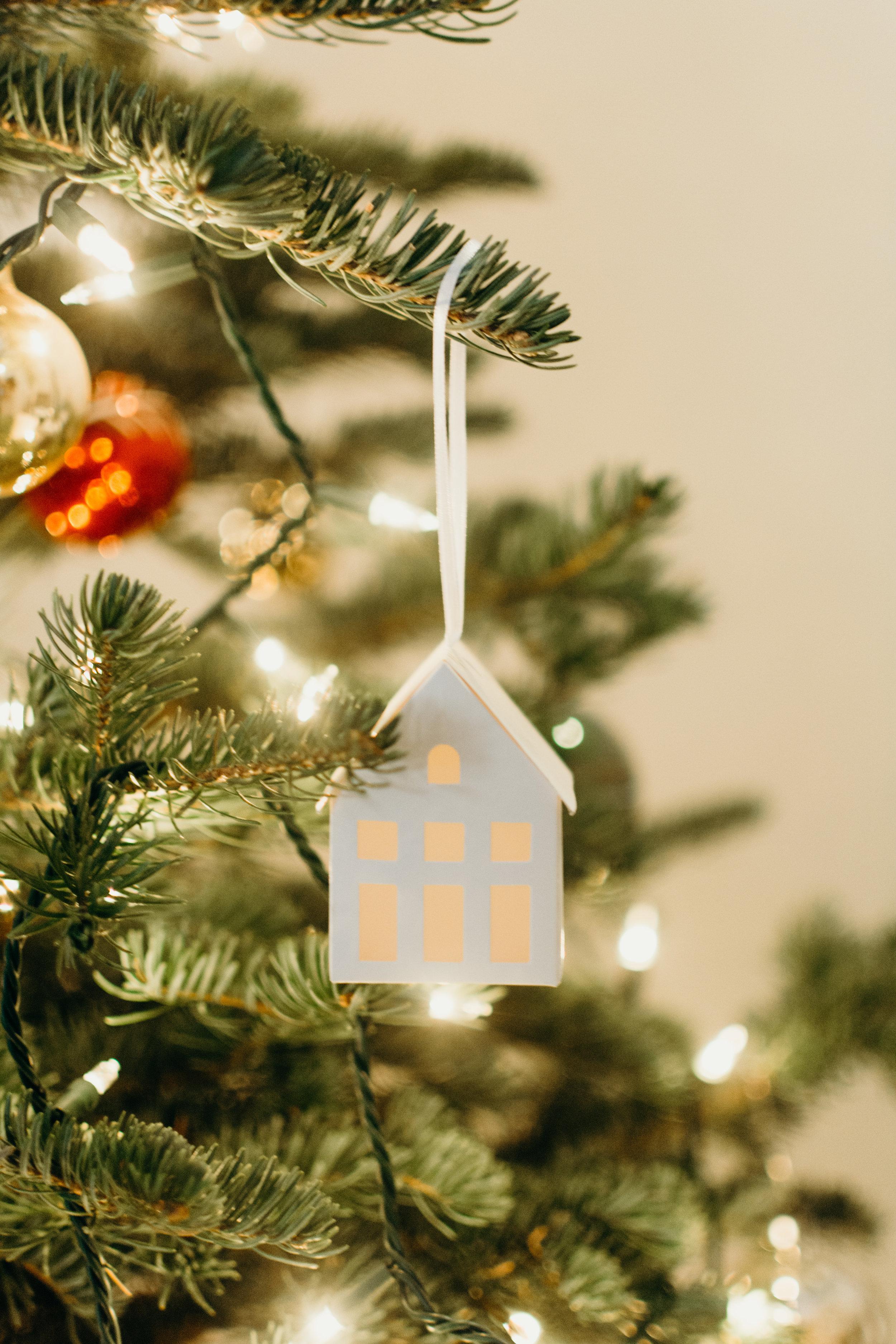 Sustainable Christmas - Madison Jamie Photograhpy - @madisonjoue-1735.jpg