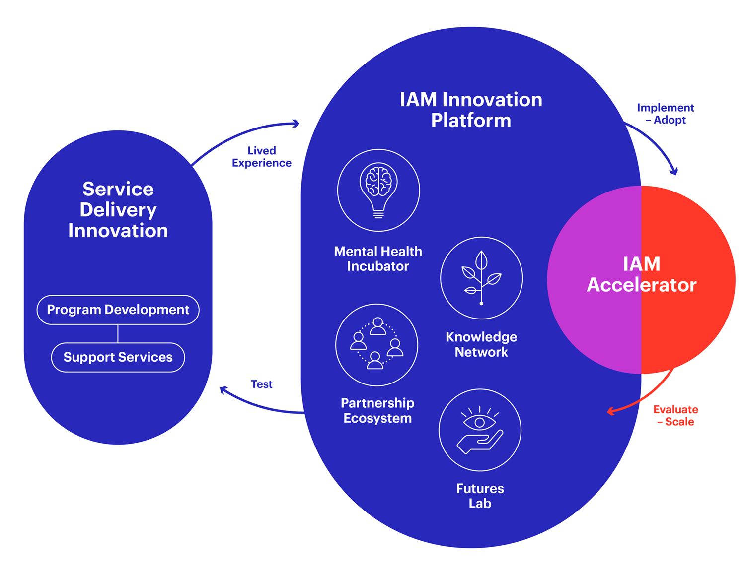 Diagram of IAM's Innovation Platform showing the 3 key components. First key component is Service Delivery Innovation which includes program development and support services. Second key component is IAM Innovation Platform which includes mental health incubator, knowledge network, partnership ecosystem, and futures lab. Third key component is IAM Accelerator.