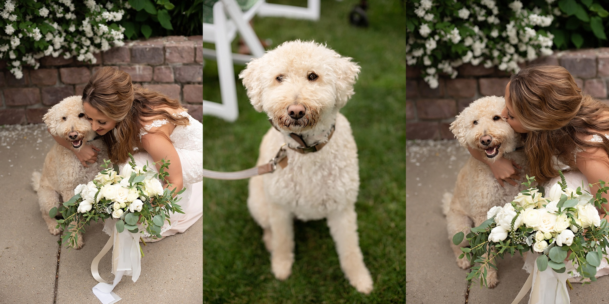 bride and puppy share moment during her wedding ceremony