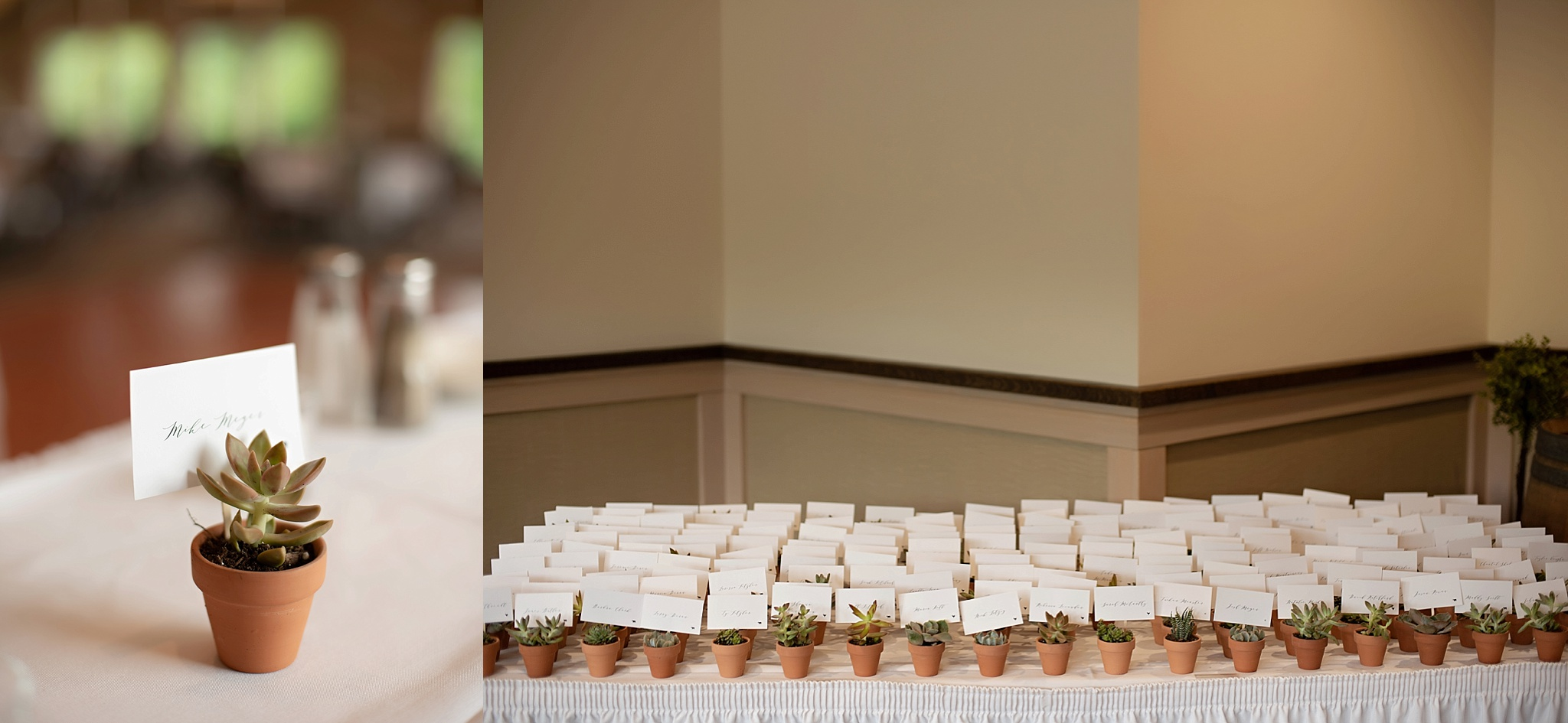 place cards and meal tickets in succulents as wedding guest gift