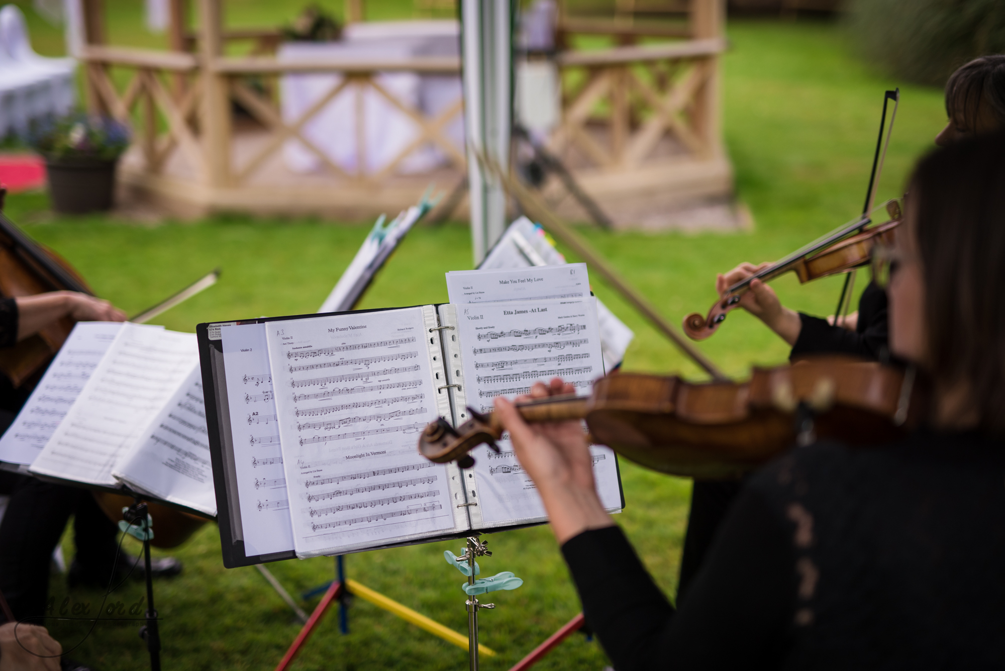 a string quartet provide musical entertainment during the wedding welcome drinks reception
