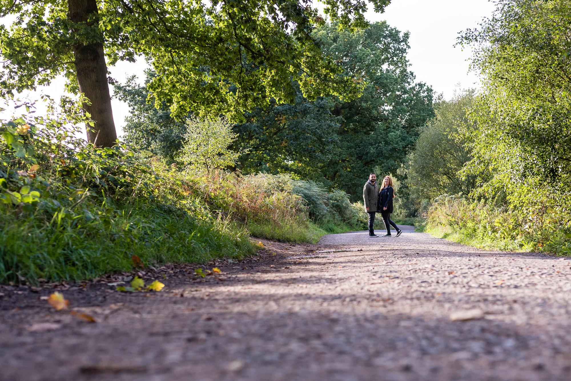 Long shot, Delamere Forest path
