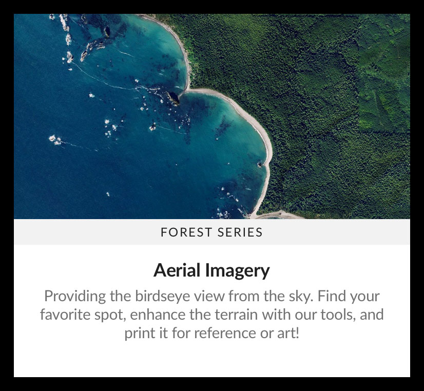 Map-Style-Forest-aerial.jpg