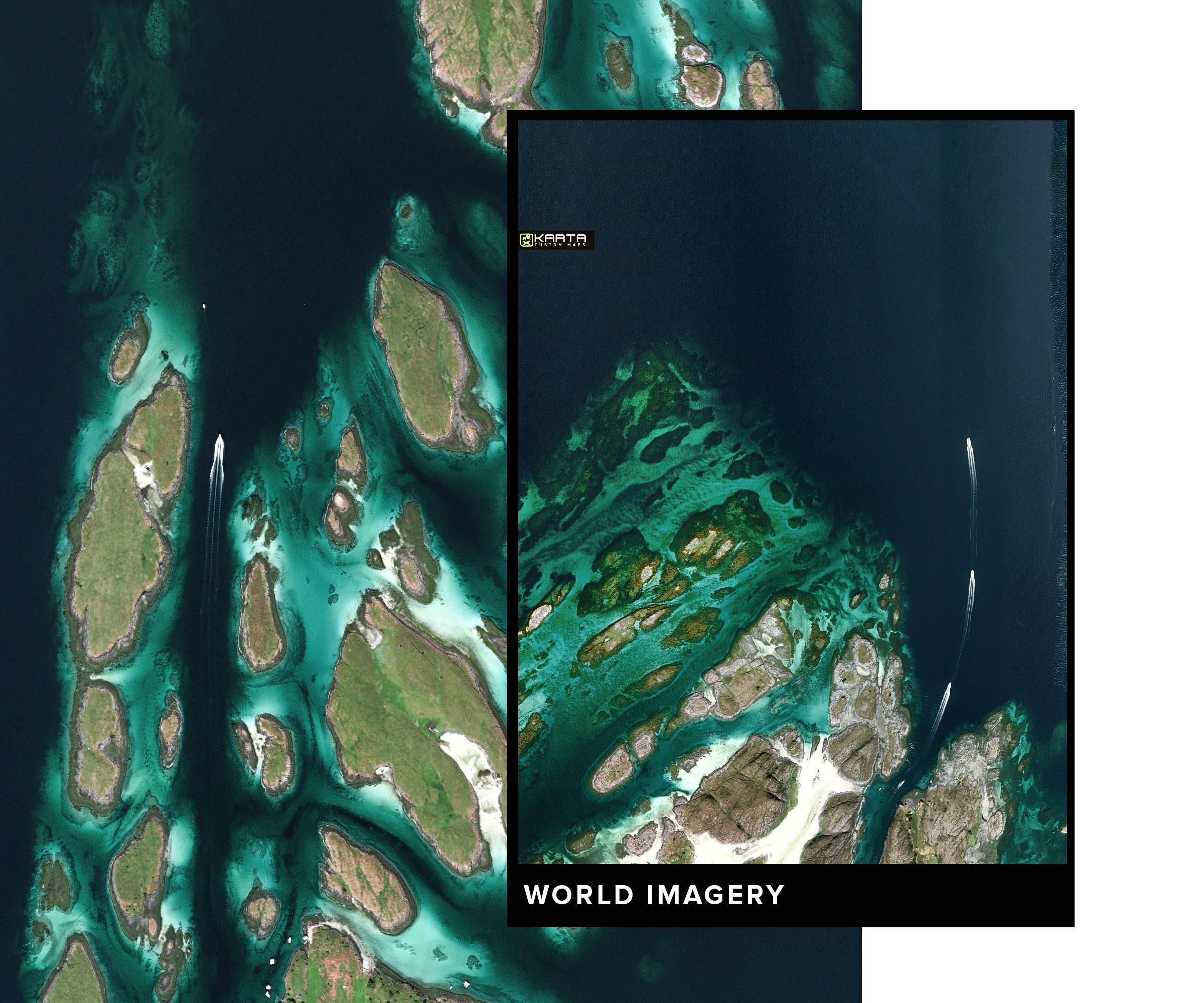 KARTA_FOREST_World1.jpg