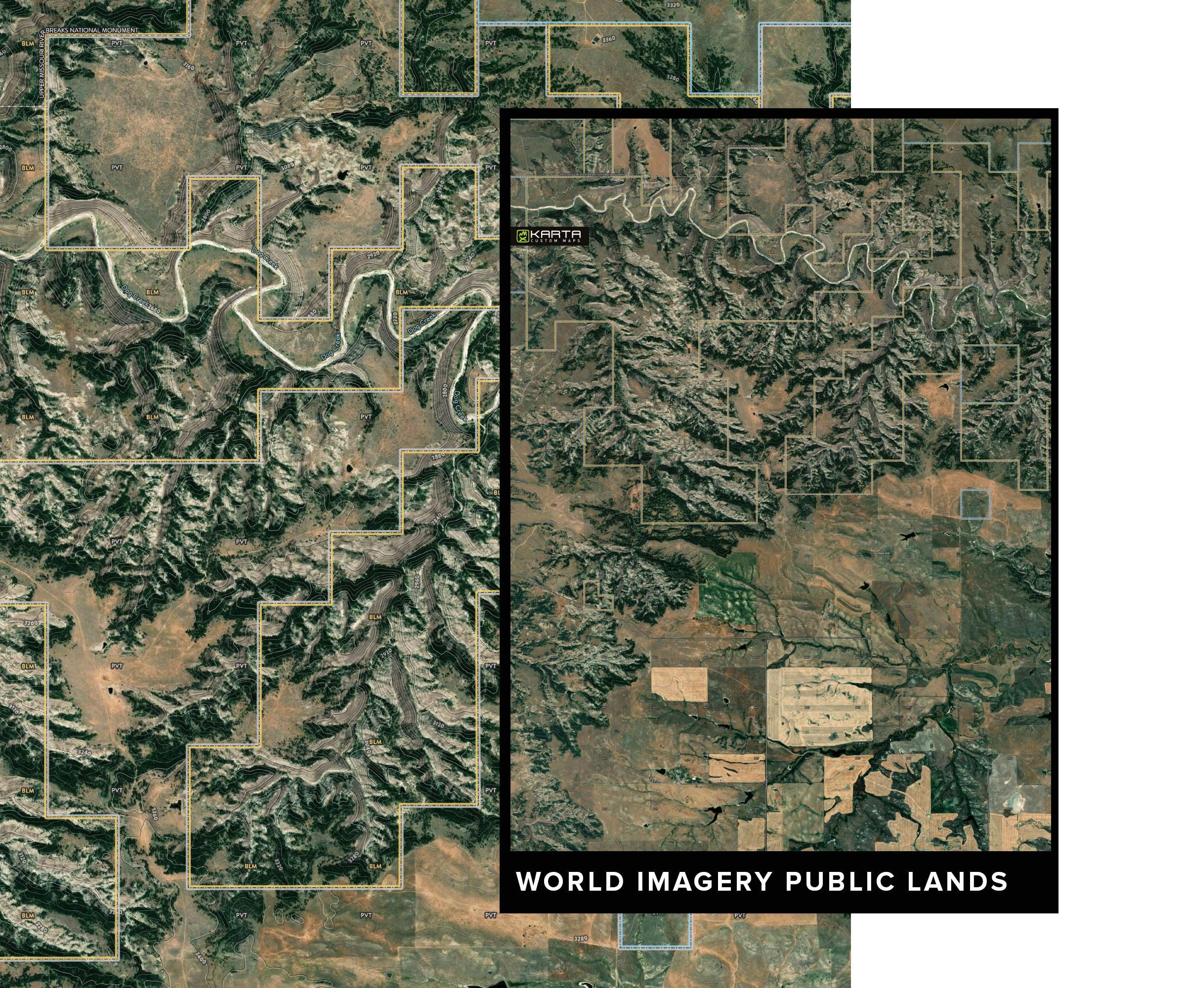 KARTA_FOREST_World-public1.jpg