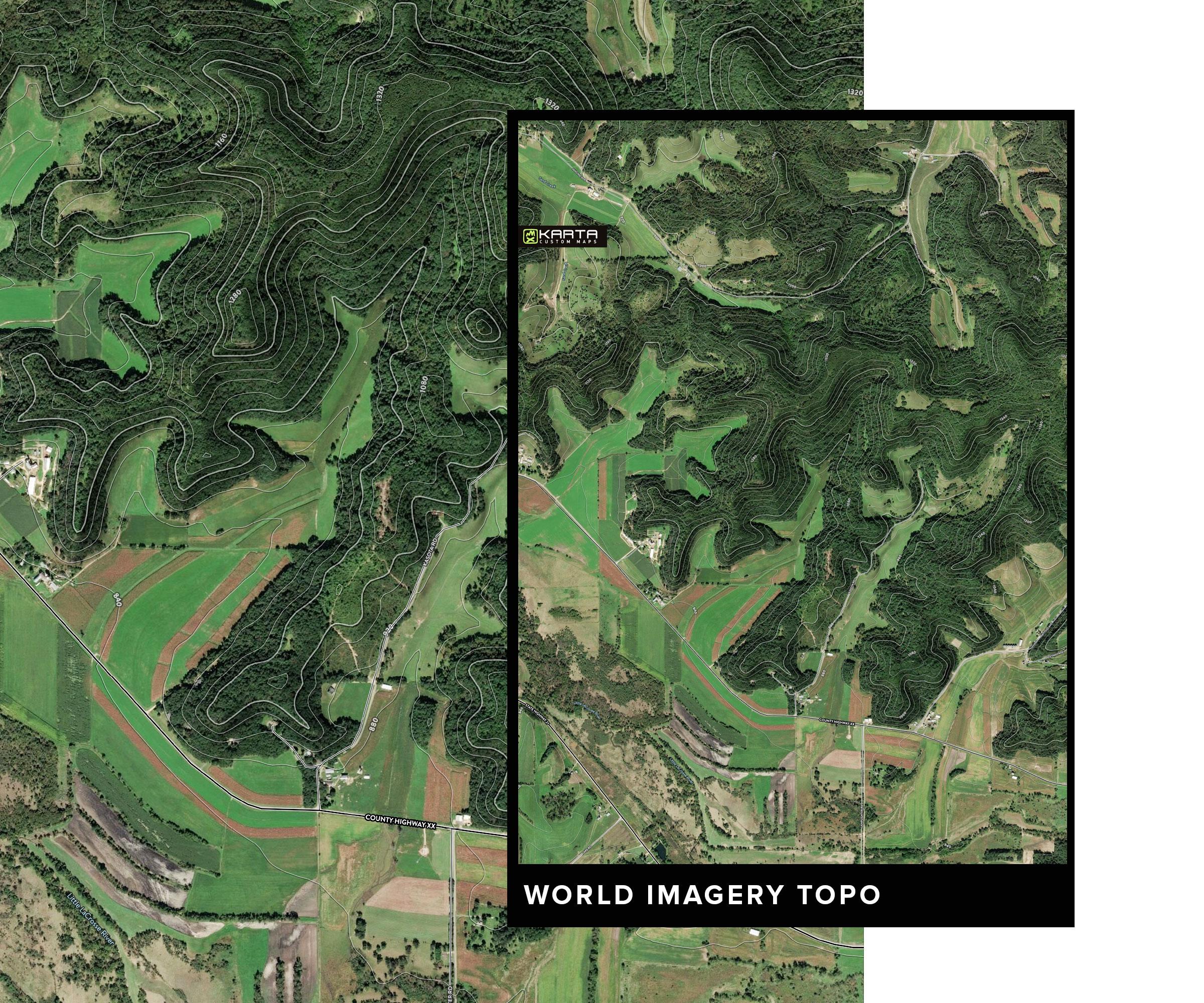 KARTA_FOREST_World-topo3.jpg