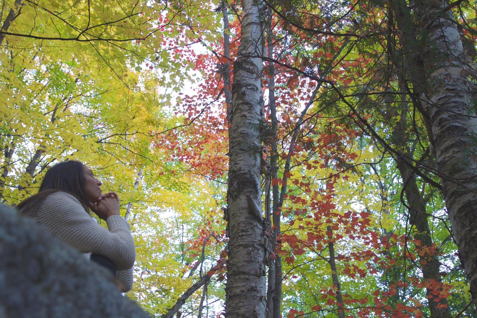 PIC VIRGINIE FOREST.jpg