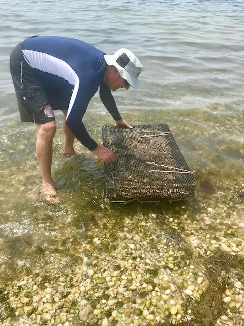 Oysters in envelope Academy Garden Greg July 3.jpg