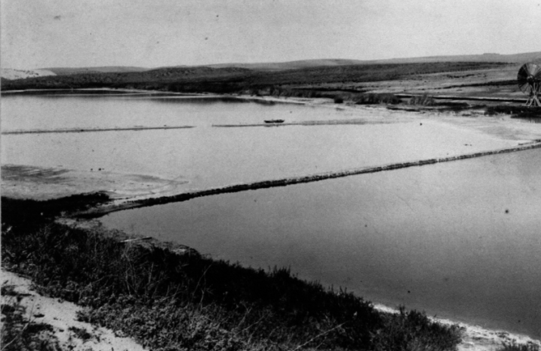 "Salt Marsh 1887 ""Salt Lake Days"""
