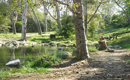 2014 Upper Pond, H.Wilderness Park