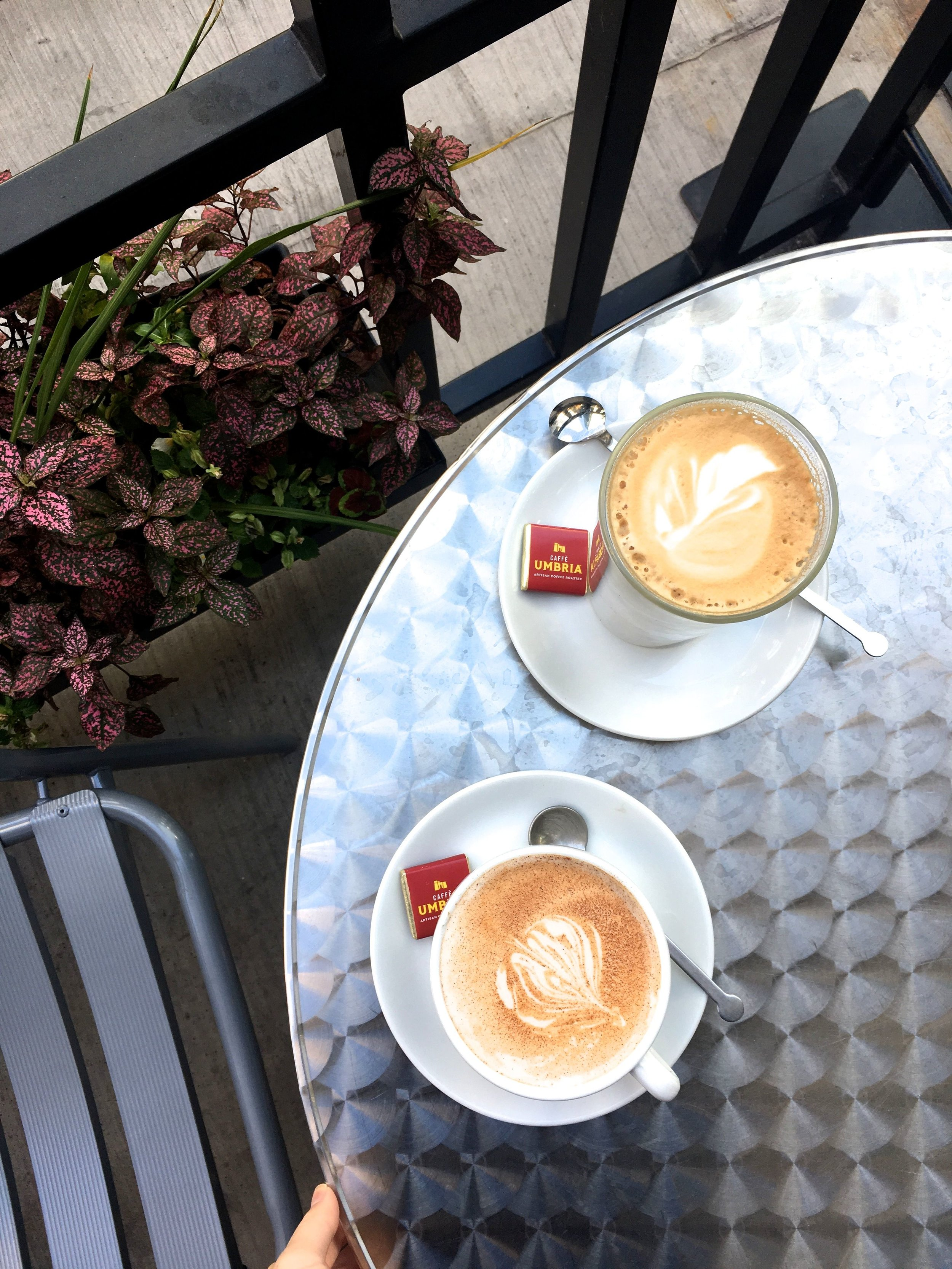 Umbria Coffees.jpg