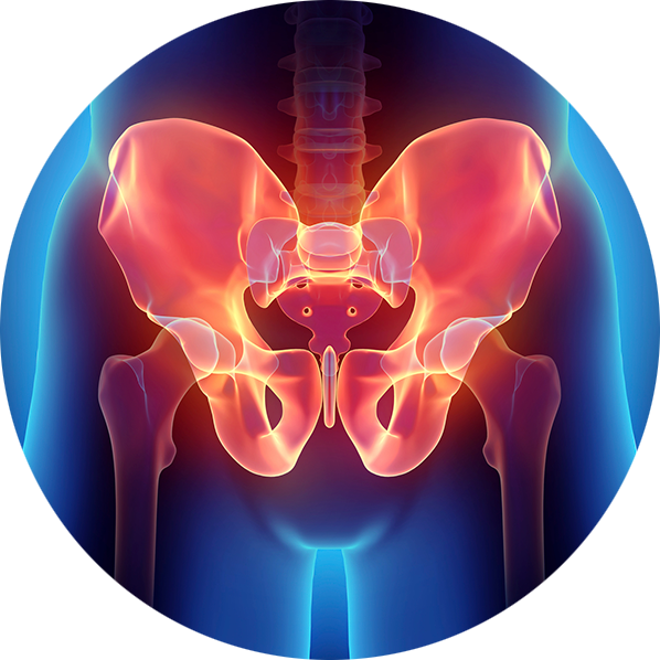 X-ray of pelvis infused with a red glow