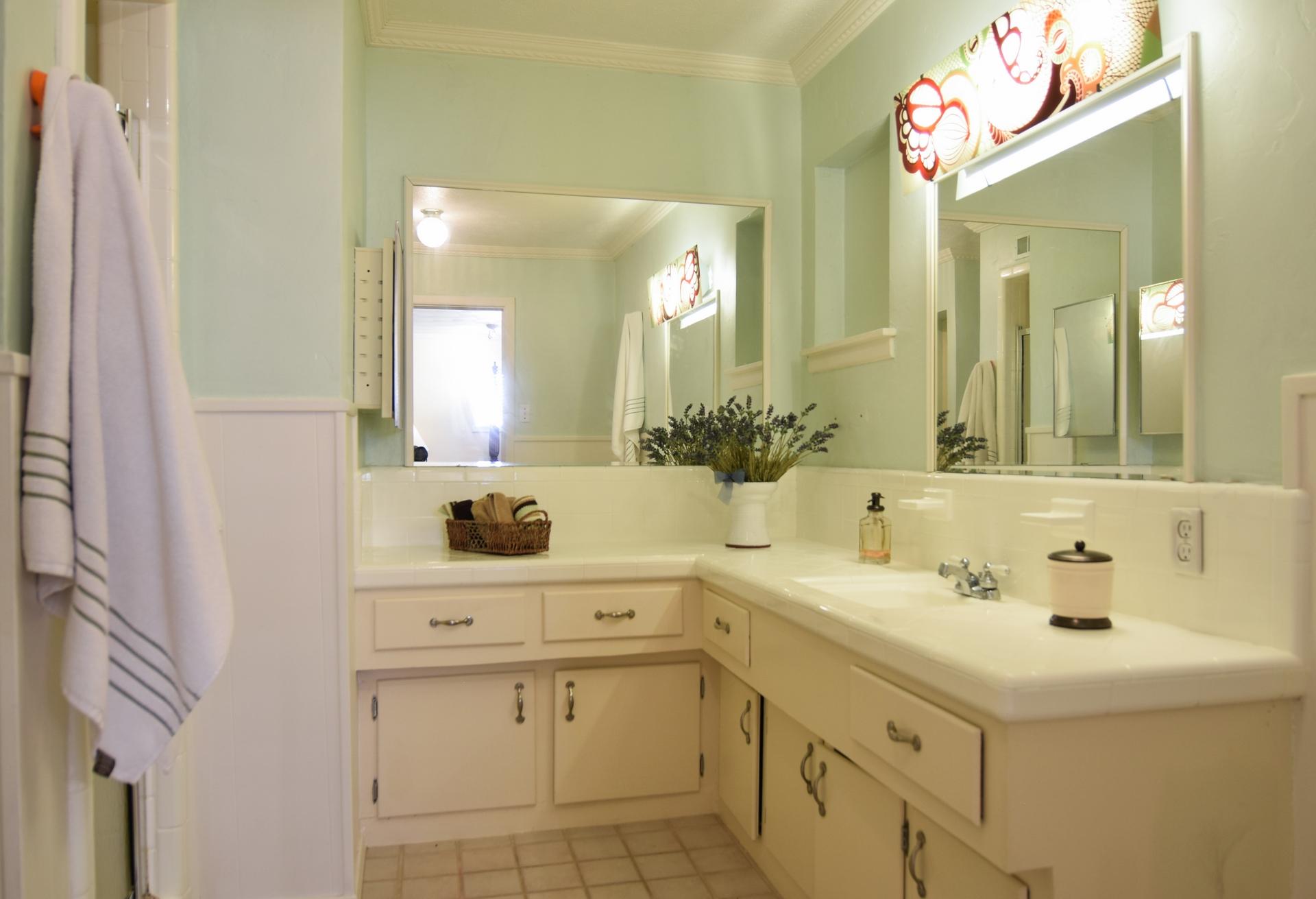 Master Bath 3235 Timberview Rd Dallas TX 75229.jpg