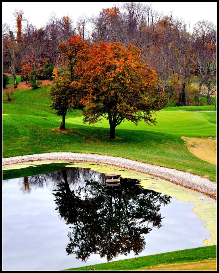 Autumn Reflection - Devou Park.jpg