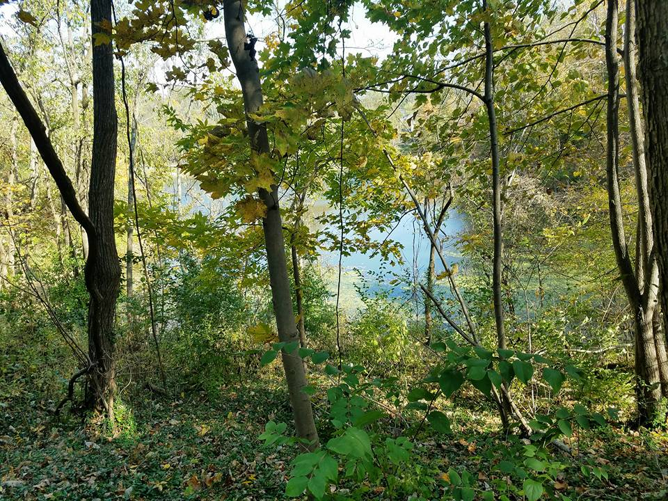 Devou Park - Prisoner's Lake - Trail.jpg
