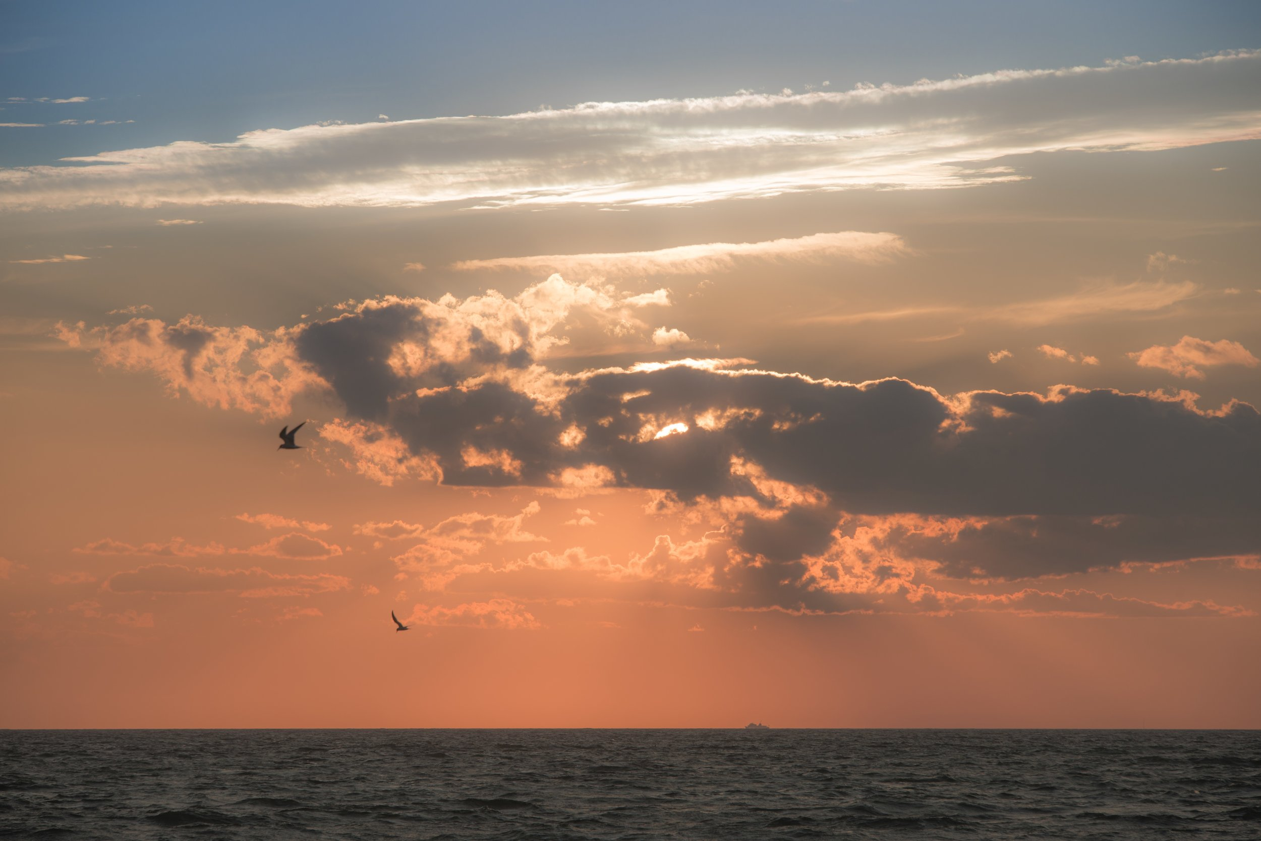 Nantucket Sound II, MA