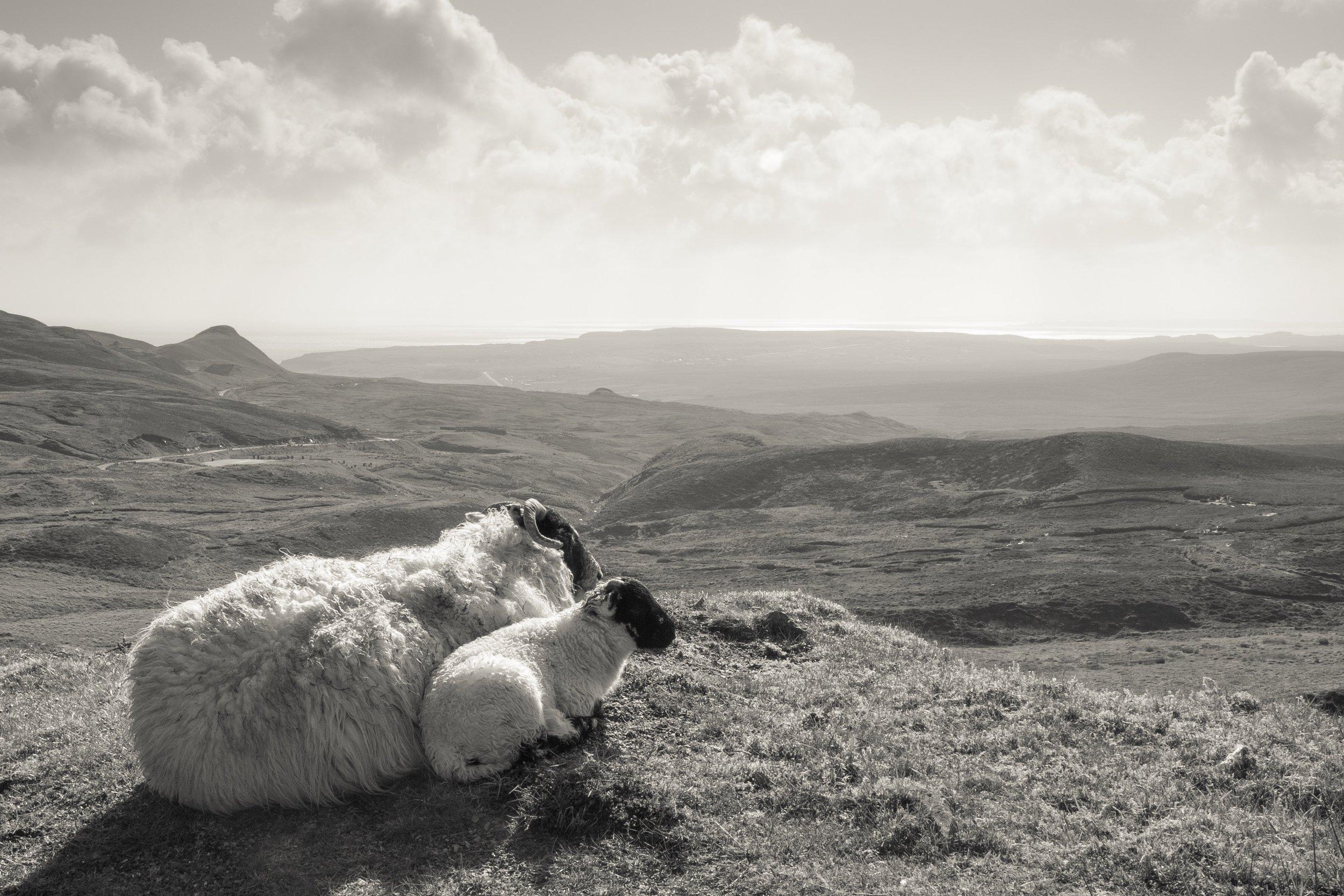 The Quiraing III, Isle of Skye, Scotland
