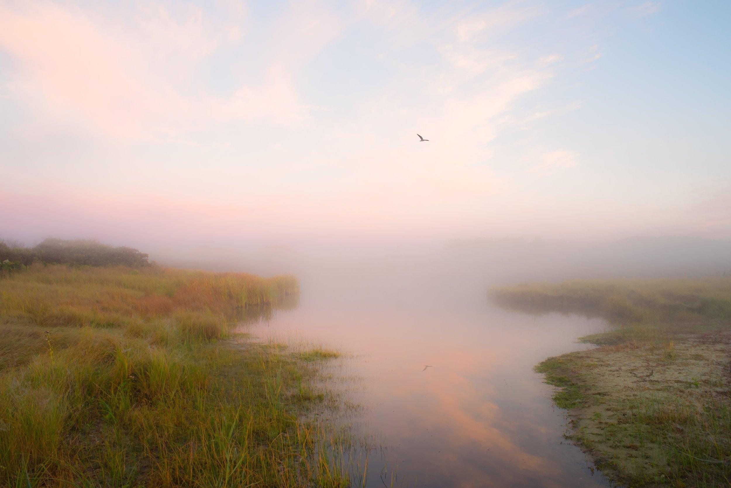 Sesachacha Creek I - Pink mist