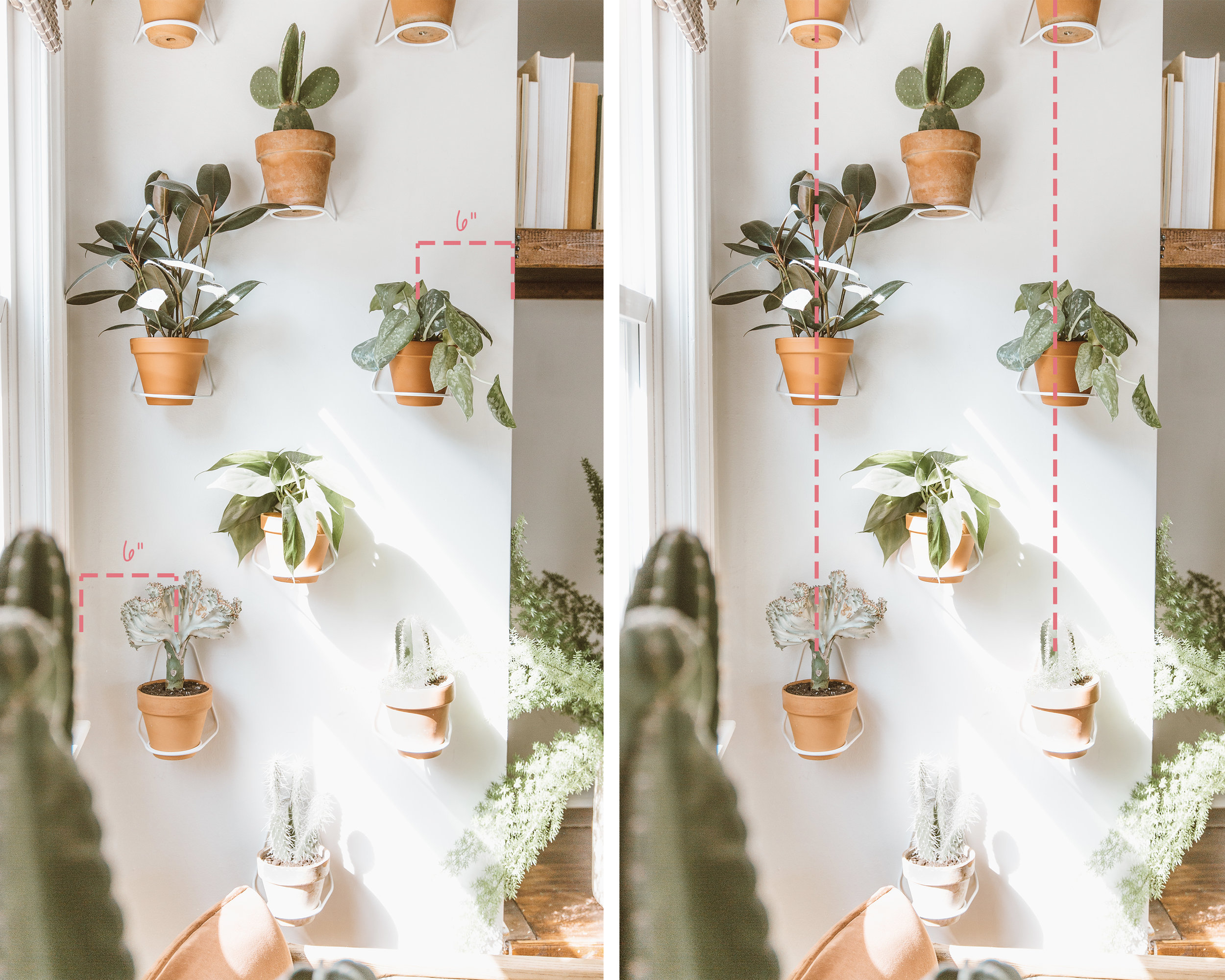 _forthehome-how-to-living-wall-step1.jpg