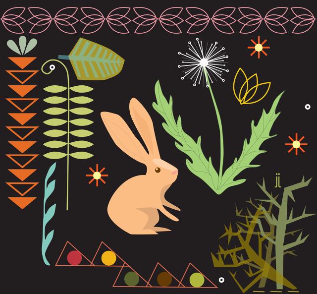 PageImage-495838-2364314-bunny2.jpg