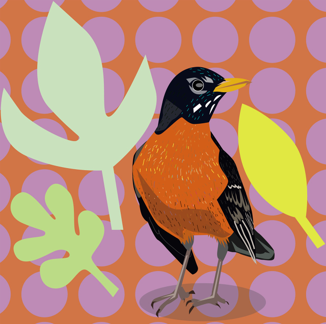 PageImage-495838-2442186-robin_colorful.jpg