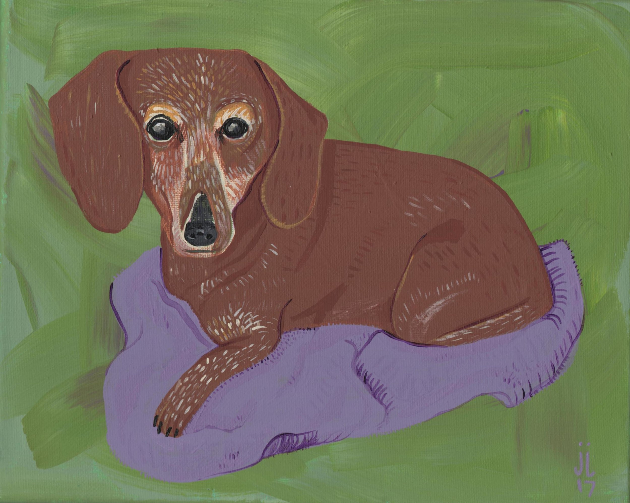 Pet Portraits by June Jewell  #junejewelldesigns