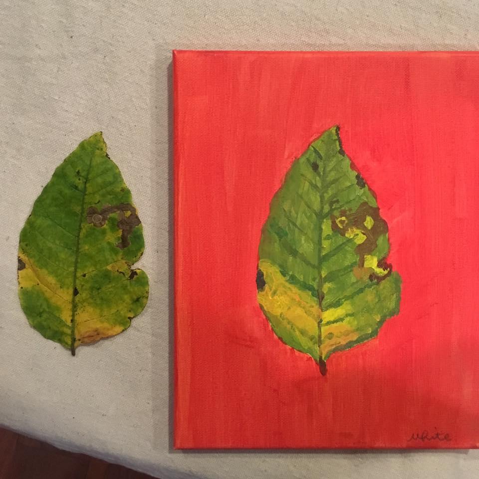 Pupil Leaf